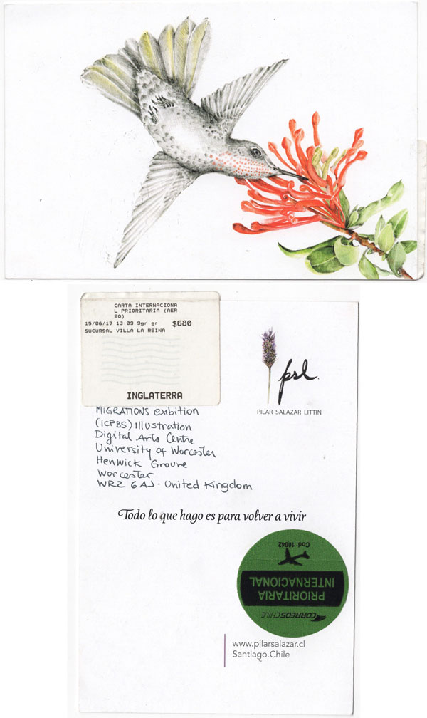 Migration-Postcard-Project-Pilar-Salazar